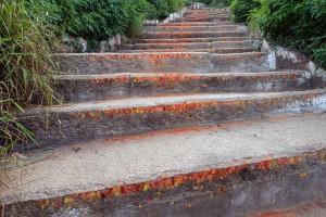 1000-marches-pour-s'élever-vers-le-temple.